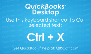 QuickBooks Keyboard Shortcuts Ctrl X Cut text